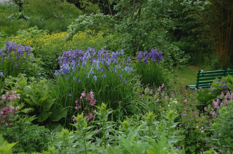 Writers make gardens bloom online there blooms a garden for Kingsbury garden designs