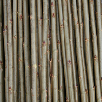 cut willow rods